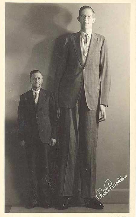 самый высокий человек в истории Роберт Уодлоу 2