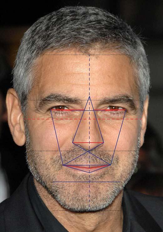 Джорджа Клуни с точки зрения золотого сечения