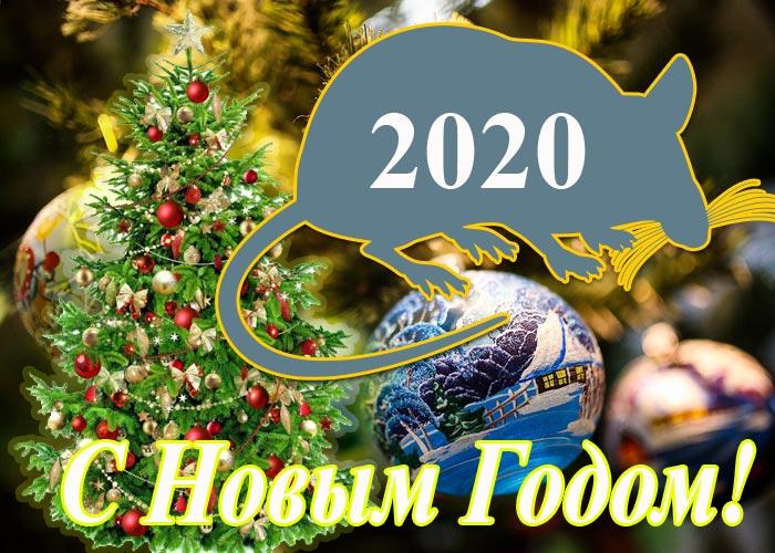 Новый 2020 год Белой металлической крысы