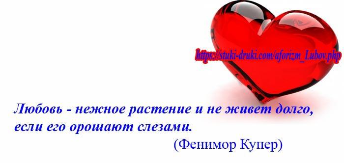 афоризм про любовь 16