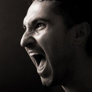 Гнев 05