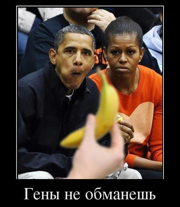 демотиватор Обама